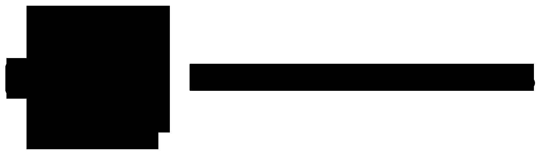Earsonics logo